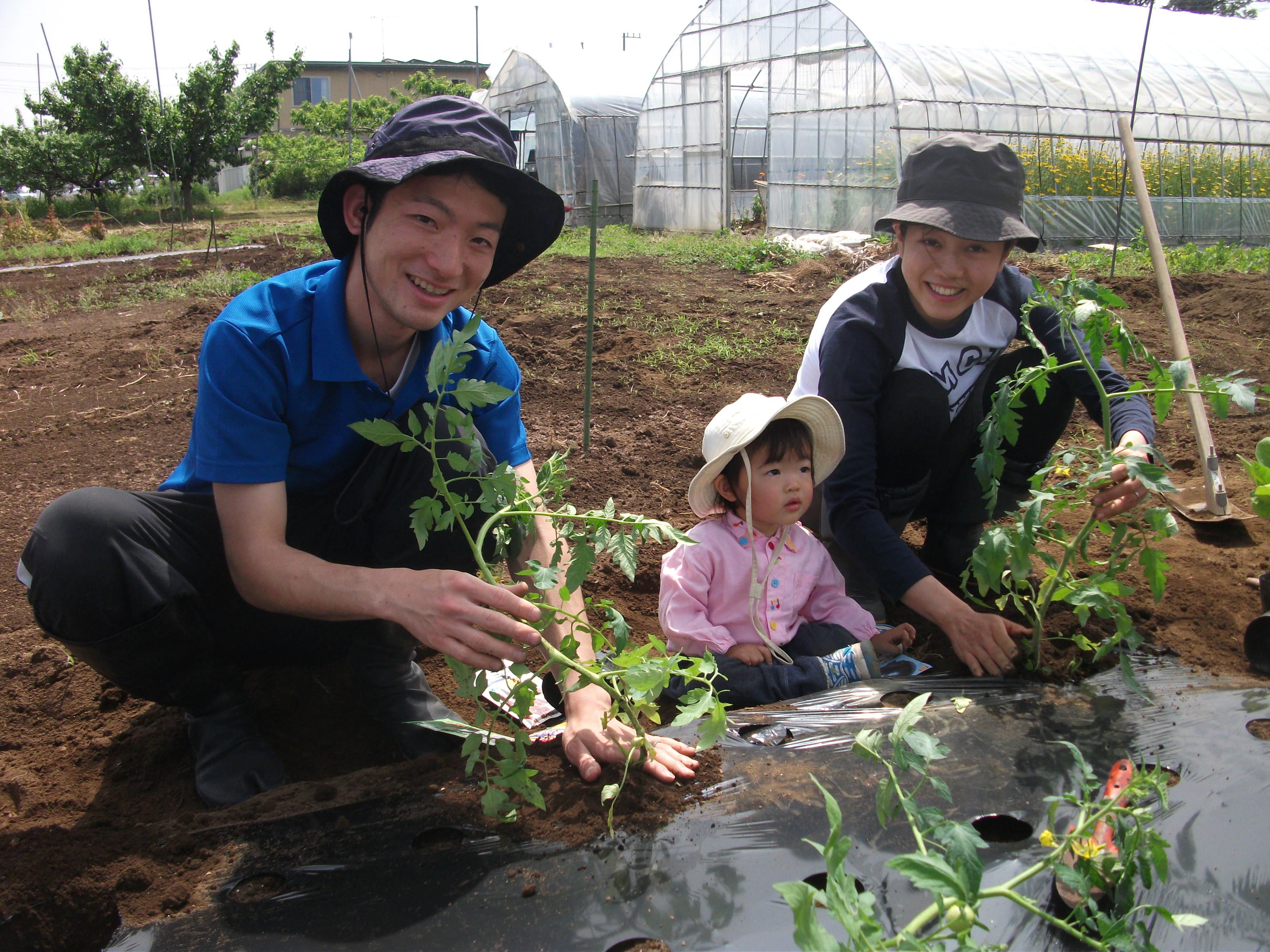 25_farm